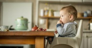 Immagine per l'articolo: I primi passi verso l'educazione alimentare