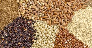 Immagine per l'articolo: Fabbisogno calorico e nutrienti: zuccheri, grassi, proteine