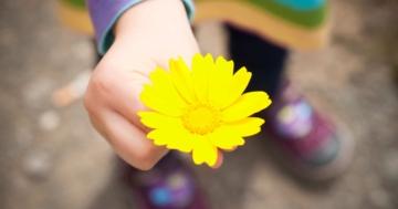 Immagine per l'articolo: L'importanza di fare la pace con i figli