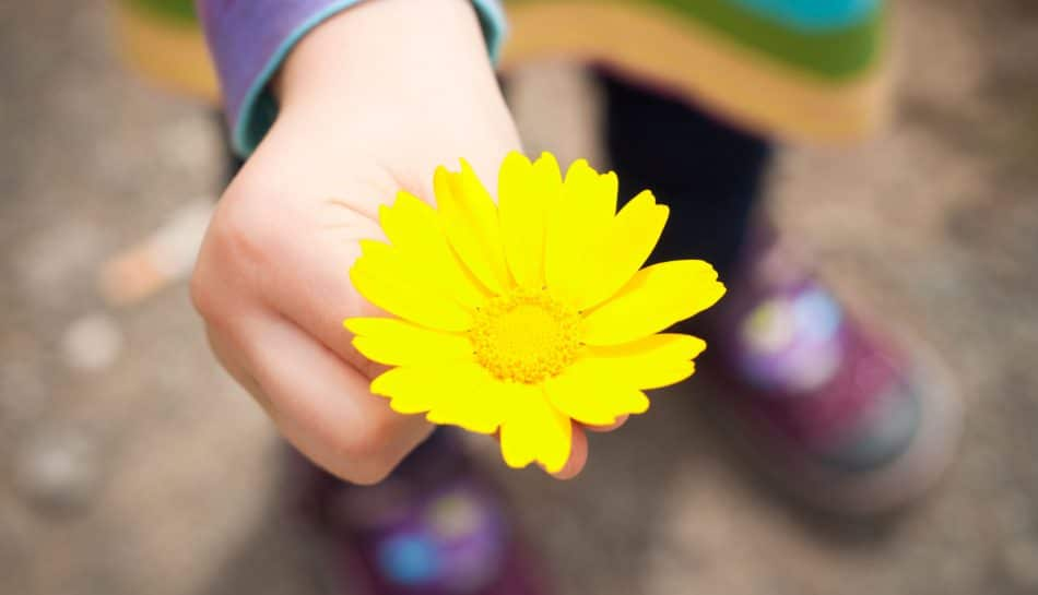 L'importanza di fare la pace con i figli