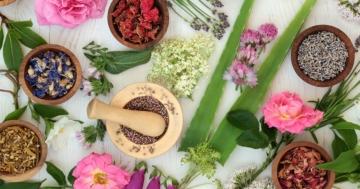 Piante medicinali e composti fitoterapici