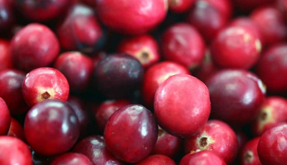 Bacche di cranberry