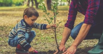Immagine per l'articolo: Come si è evoluto il ruolo del padre