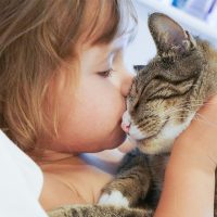 Malattie trasmesse dagli animali domestici
