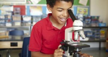 Immagine per l'articolo: Una scuola senza voti è una scuola migliore