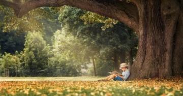 """Immagine per l'articolo: Con il libro """"sospeso"""" i bambini riscoprono il piacere della lettura"""
