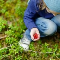 Attività da fare nella natura: orientarsi e cucinare sul fuoco