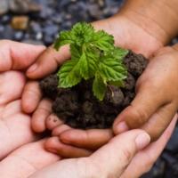 Idee anti-spreco per un mondo migliore