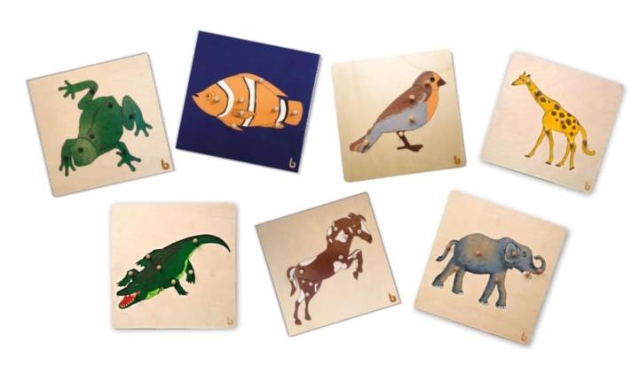 Incastri degli animali Montessori