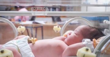 Immagine per l'articolo: Test di screeening neonatali: i bambini passati al setaccio