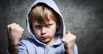 Immagine per l'articolo: I comportamenti aggressivi dei bambini