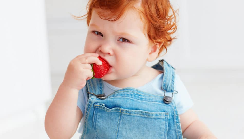 Bambino mangia una fragola